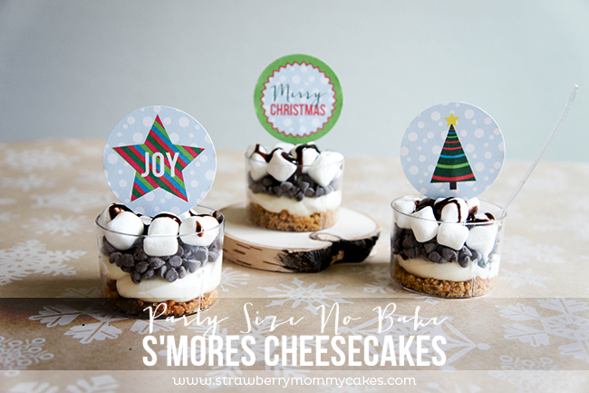 Party Size No Bake S'mores Cheesecakes