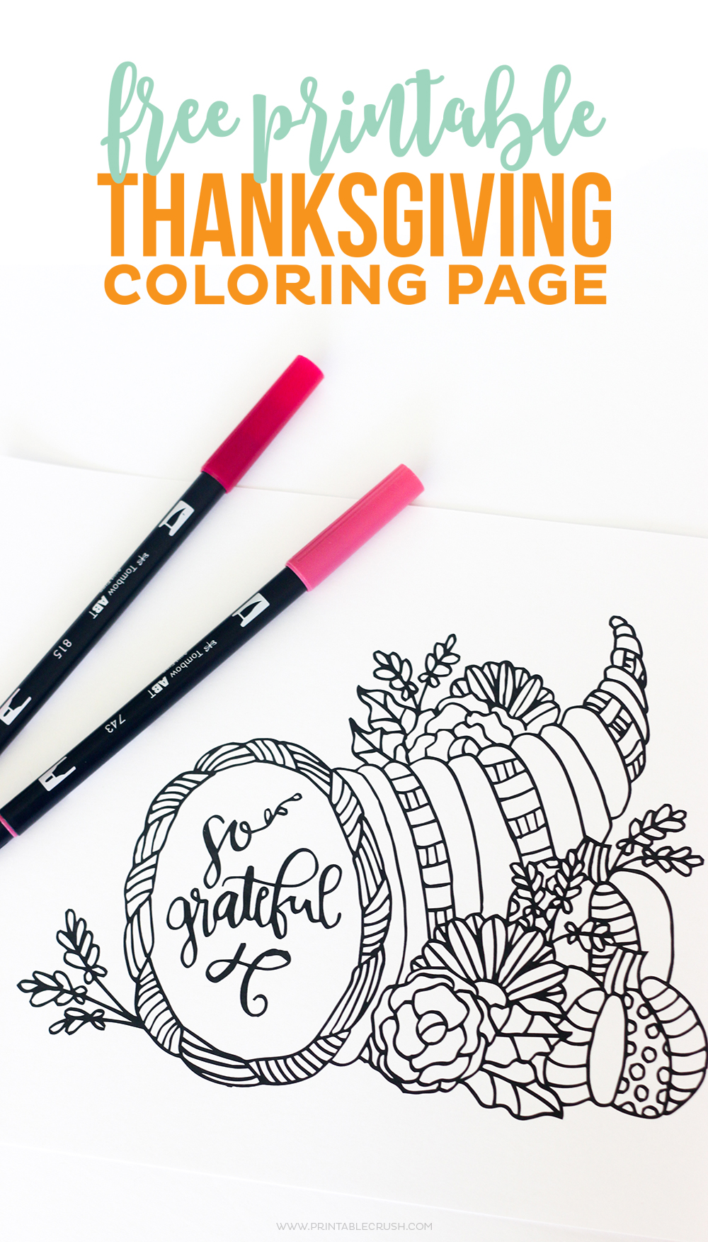 Thanksgiving Coloring Pages with 2 pens on white background
