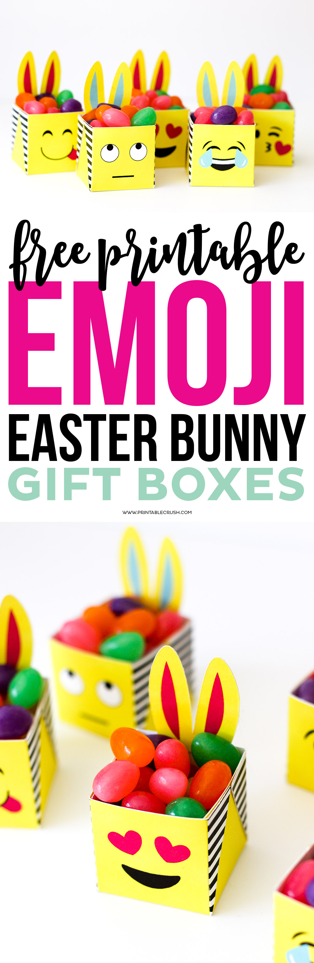 Long pin for Easter emoji bunny boxes