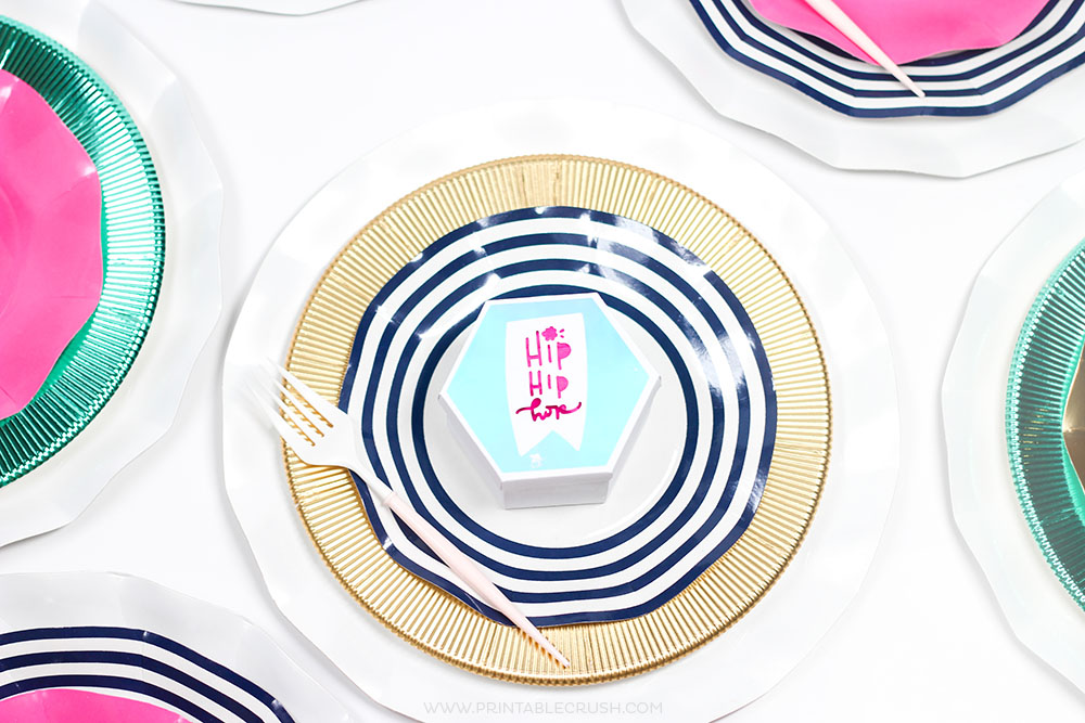 Cricut Vinyl Spring Place Setting closeup