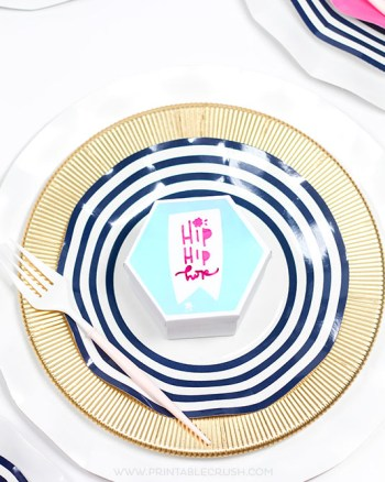 This Holographic Cricut Vinyl makes this Spring Place Setting extra pretty! You can customize each hexagon box with these adorable spring animal designs.