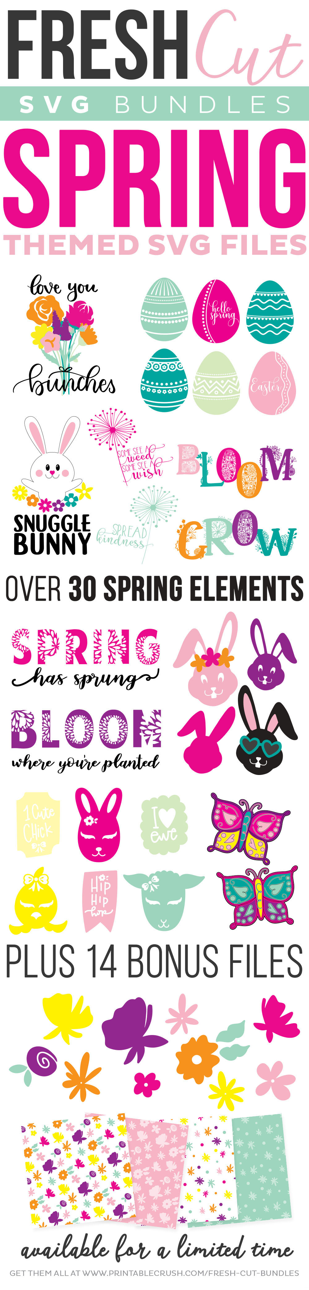 Spring Fresh Cut SVG Bundle long pin collage