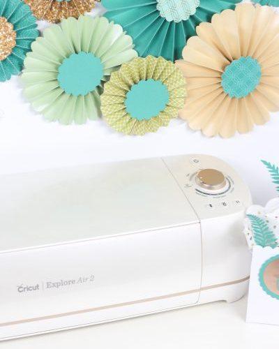 Cricut and Martha Stewart Brand Collaboration with Printable Crush