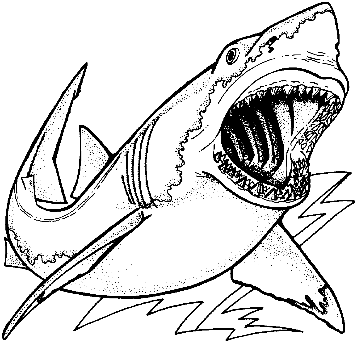 Shark Animals Page 3 Printable Coloring Pages