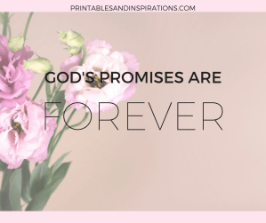 God's promises| Bible study | Bible verse | Inspirational Quote | Faith | Christian