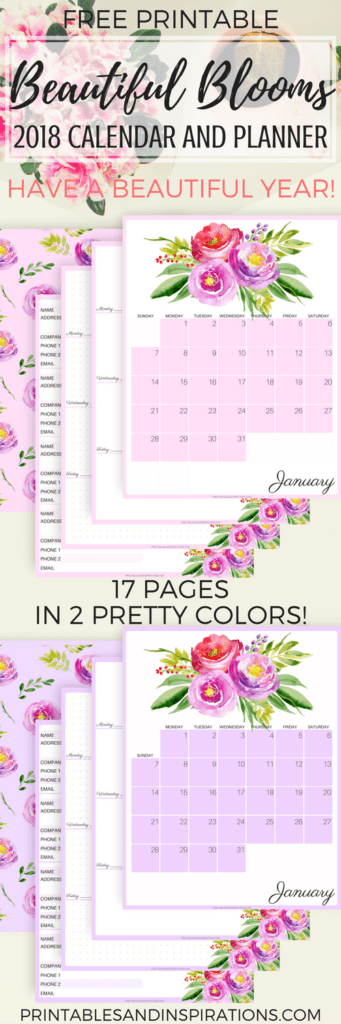It is a picture of Free Printable Address Book with regard to editable