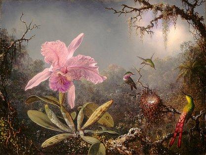 1-cattleya-orchid-and-three-hummingbirds-martin-johnson-heade