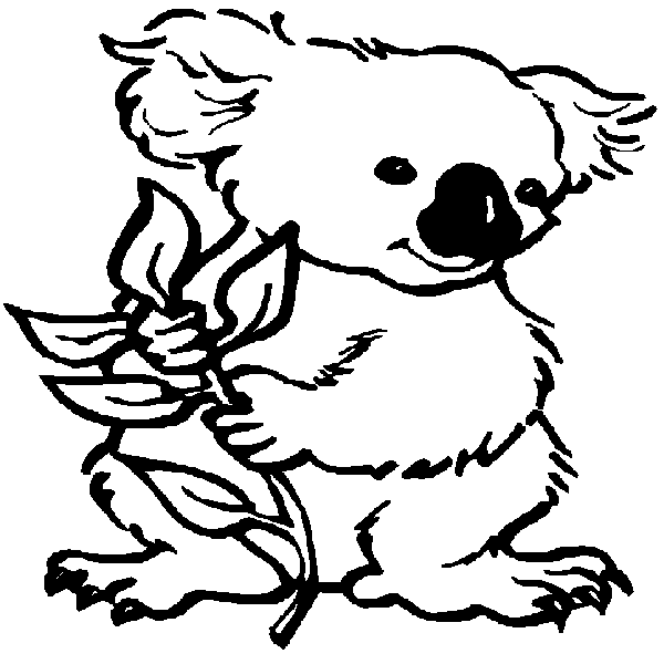 14 kids coloring pages koala print color craft