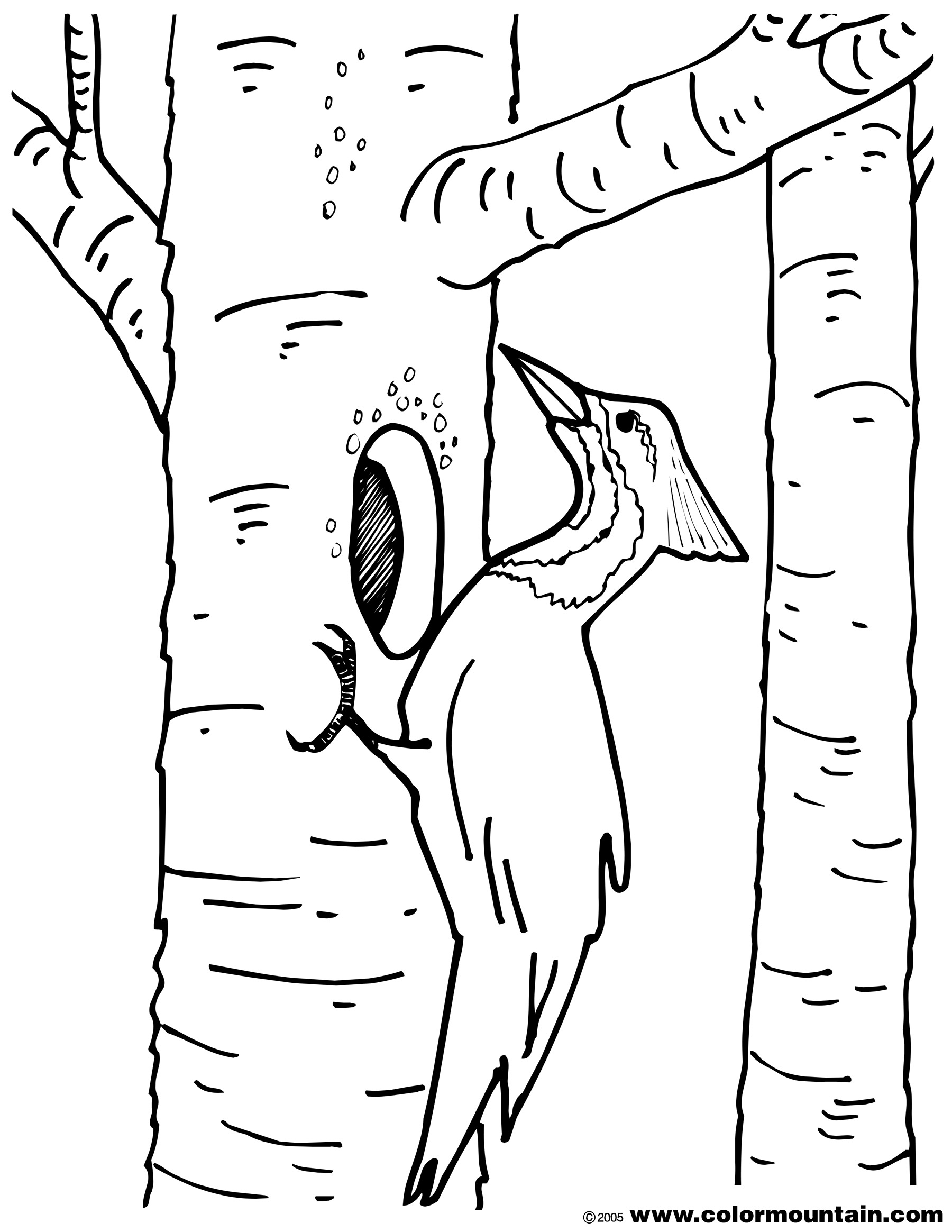 12 Woodpecker Coloring Pages For Kids