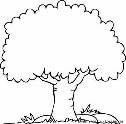 printable tree printable