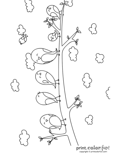 Cute cartoon birds on a branch