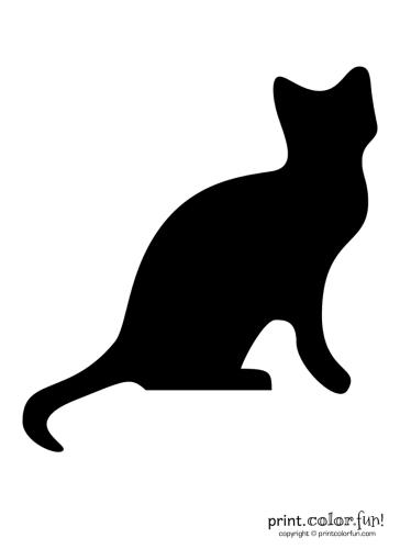 Pumpkin carving stencil Black cat coloring page Print Color Fun