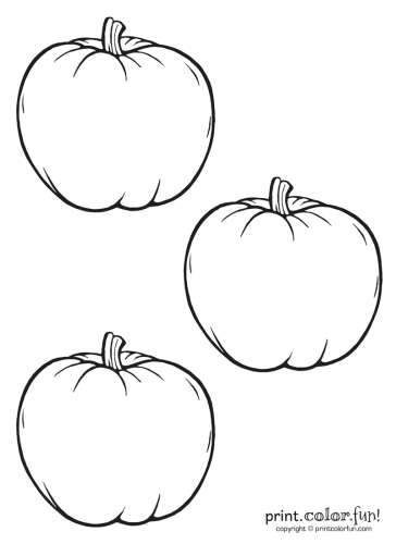 Three-blank-pumpkins
