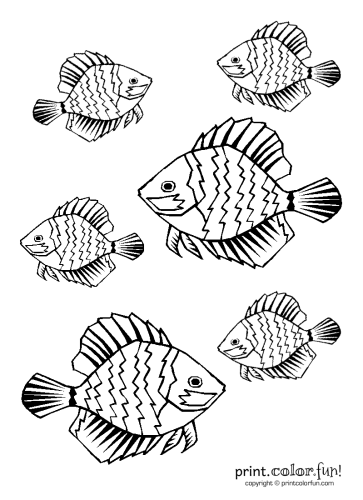 Tropical fish coloring page Print Color Fun