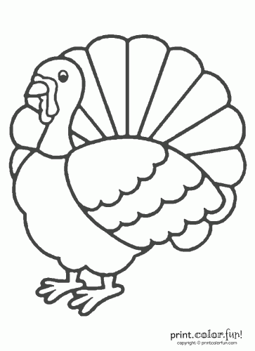 thanksgiving turkey coloring coloring page print color fun
