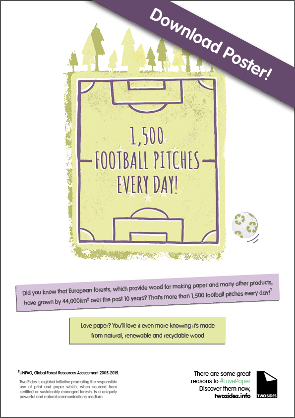 Football Pitch Poster