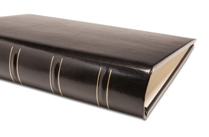 Gallery Leather Album spine gold detail