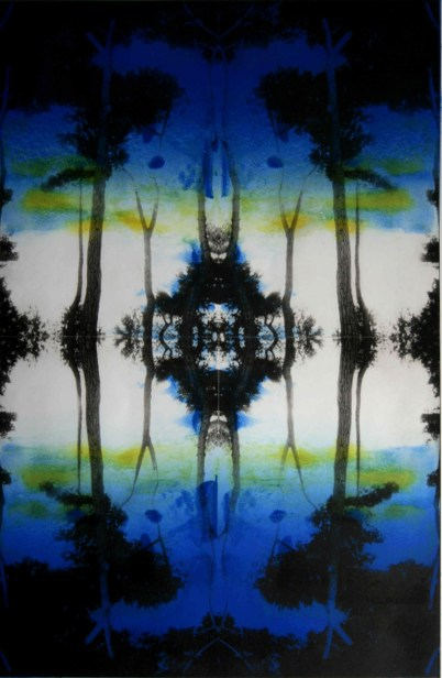 Clare Grossman, Polarity of the Pines No 6, monotype with solar plate etching, 2014