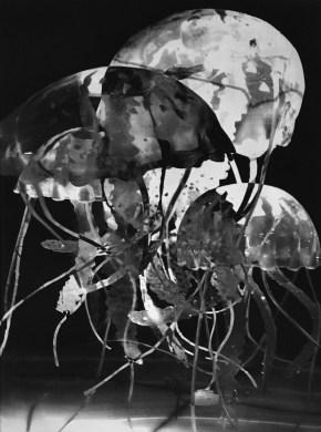 Beatrice Rogerro Fossati, 'I am the river', Photopolymer 