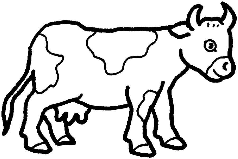 Ausmalbilder Ausmalbilder Kuhe Zum Ausdrucken Kostenlos Fur Kinder Und Erwachsene