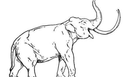 Ausmalbilder: Mammut