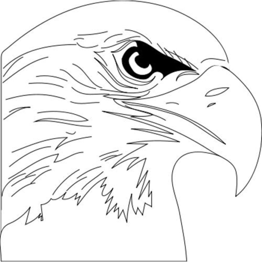Coloring Pages Coloring Pages Osprey Printable For Kids