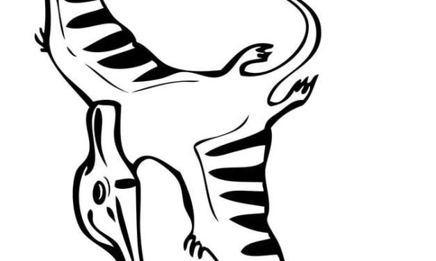 Ausmalbilder: Pteranodon