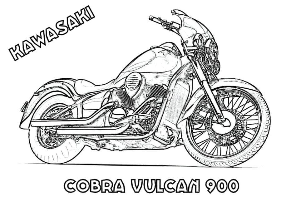 Disegni Da Colorare Kawasaki Stampabile Gratuito Per
