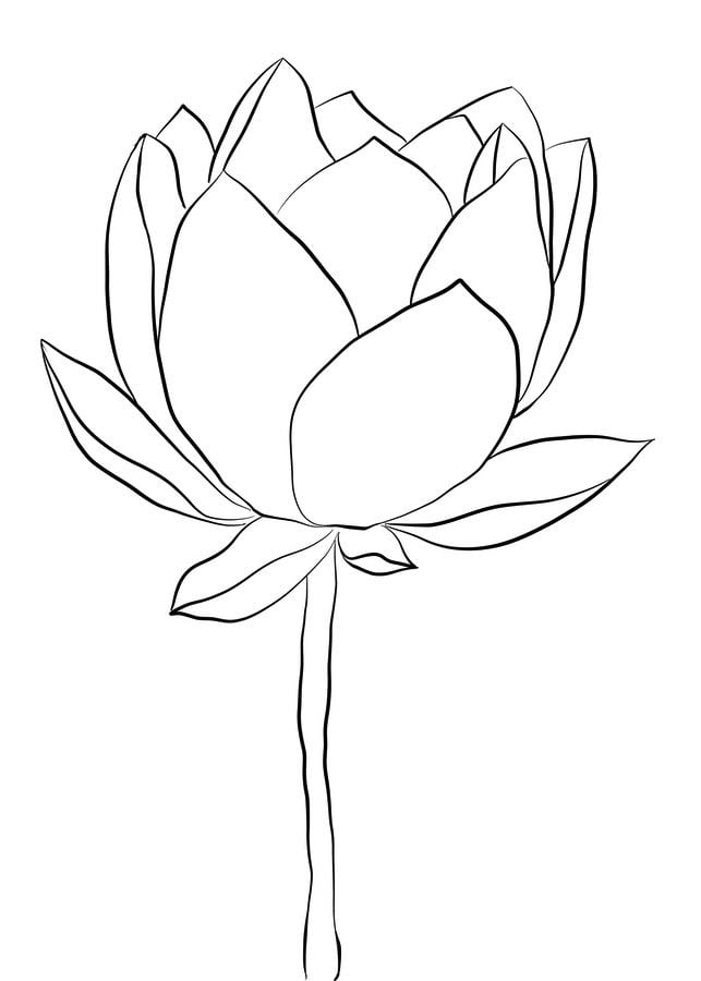 Coloring Pages Coloring Pages Lotus Printable For Kids Adults Free To Download