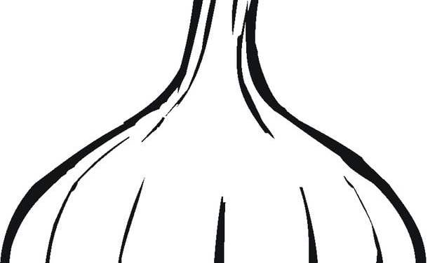 Coloring pages: Garlic
