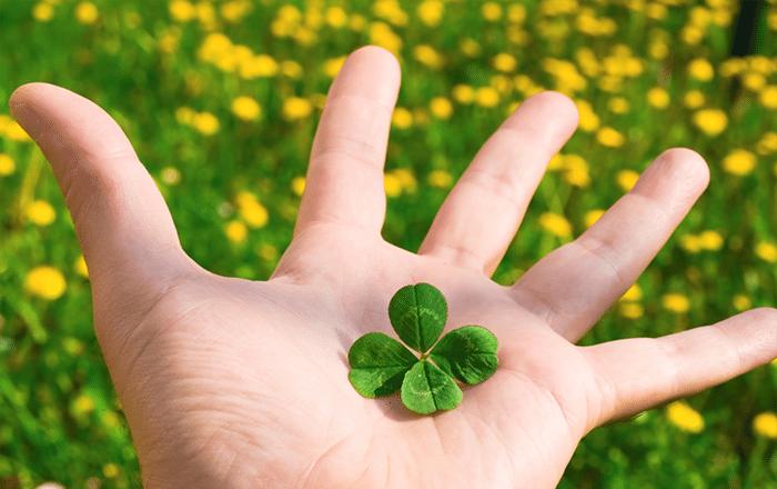 4 leaf clover-print media centr