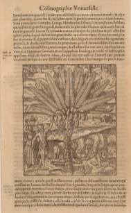 """Andre Thevet: Date-Palm. 1575. An original black and white wood-cut. 8"""" x 12""""."""