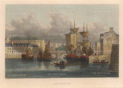 "Radclyffe: Cardigan. 1836. A hand coloured original antique steel engraving. 5"" x 4"". [WCTSp475]"