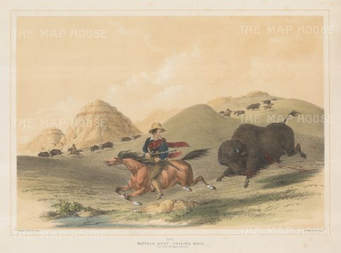 Buffalo Hunt: Chasing back. From one of the most important works on Native American culture.