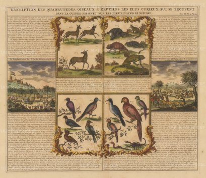 Ghana: View of Elmina, a Pig Hunt, Mammals, Birds & Reptiles. Explanatory text in French.