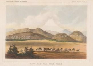 Mount Hood: View from Tysch Prairie.
