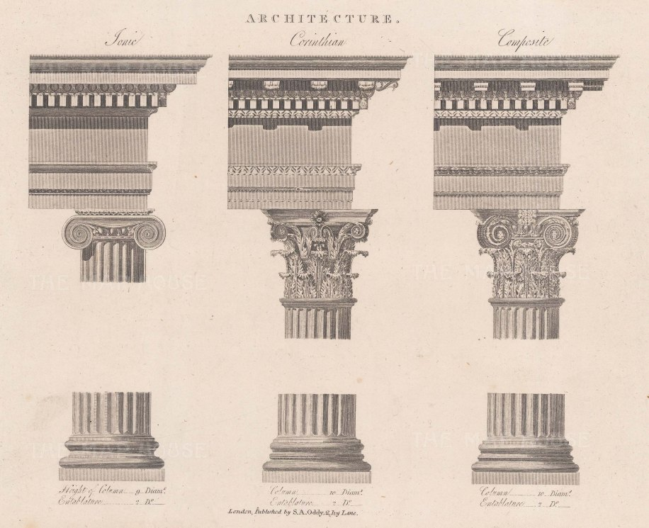 Ionic, Corinthian and Composite Orders. Diagram of columns' base, shaft and capital.
