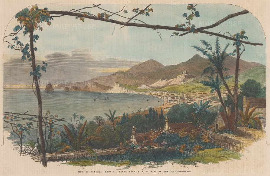 "Illustrated London News: Funchal, Madeira. 1859. A hand coloured original antique wood engraving. 14"" x 9"". [AFRp1038]"