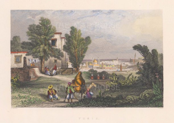 "Temple: Tunis, Tunisia. c1840. A hand coloured original antique steel engraving. 9"" x 7"". [AFRp1106]"