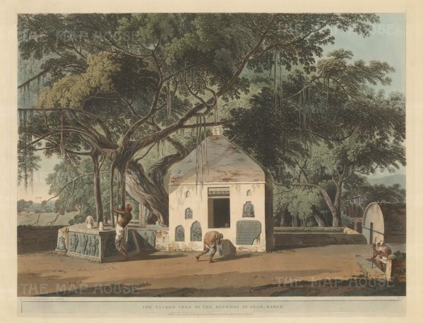 Bihar: Akshaya Vat. The sacred banyan tree at the Vishnupada temple at Gaya.