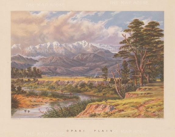Opaki Plain. View over the plain towards the Tarawera ridge.