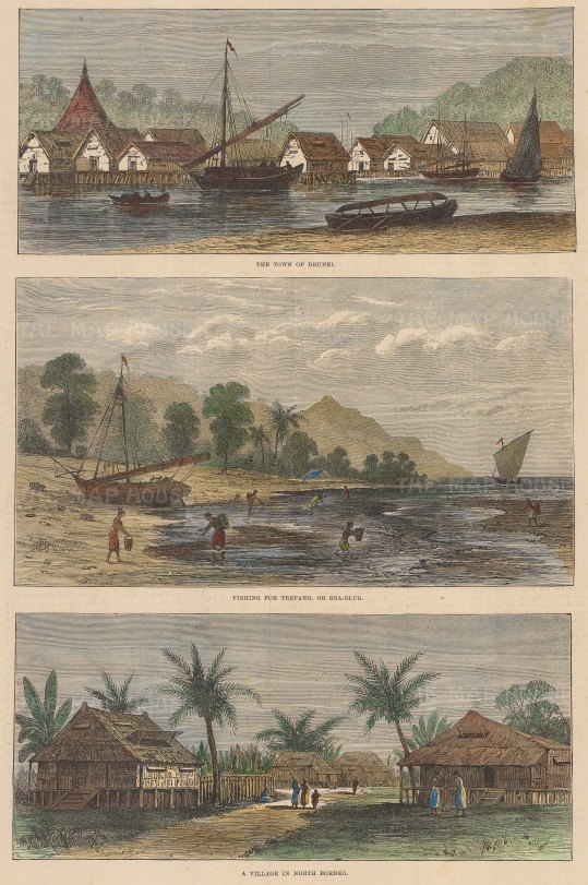 Brunei. Views of Brunei Town (Bandar Seri Begawan), fishing for Trepang and a village in the North.