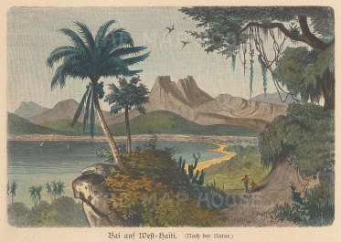 "Geiltbeck: Haiti. 1897. A hand coloured original antique wood engraving. 5"" x 4"". [WINDp1048]"