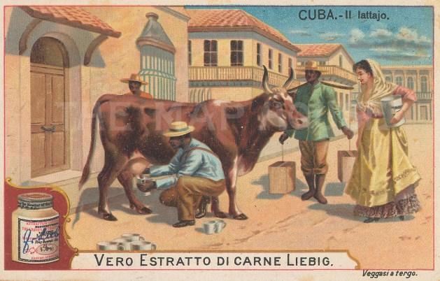"Liebig's Extract: Havana, Cuba. c1900. An original antique chromolithograph. 4"" x 3"". [WINDp1210]"