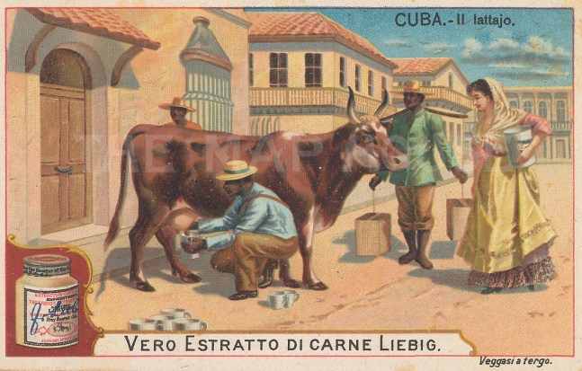 "Liebig's Extract: Havana, Cuba. c1900. An original antique chromolithograph. 4"" x 3"". [WINDp1210]"