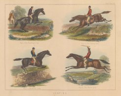 Four types of Jump; Standing, Flying, Buck (Bank) and Water.