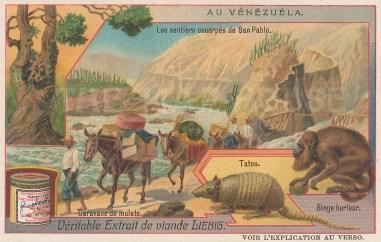"""Liebig's Extract: Venezuela. c1900. An original antique chromolithograph. 4"""" x 3"""". [SAMp1176]"""