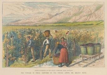 "Illustrated London News: Santiago, Chile. c1870. A hand coloured original antique wood engraving. 10"" x 7"". [SAMp1461]"