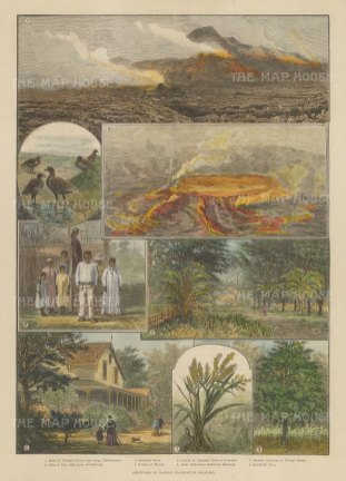 8 sketches including panoramic views of Halemaumau and the lake of fire.