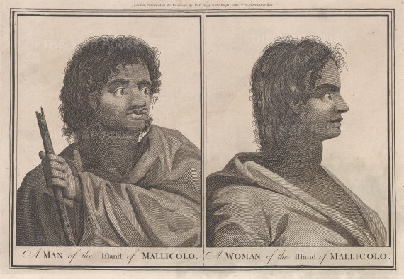 New Hebrides (Vanuatu): Mallicolo. Portraits of a man and woman from the island of Mallicolo.